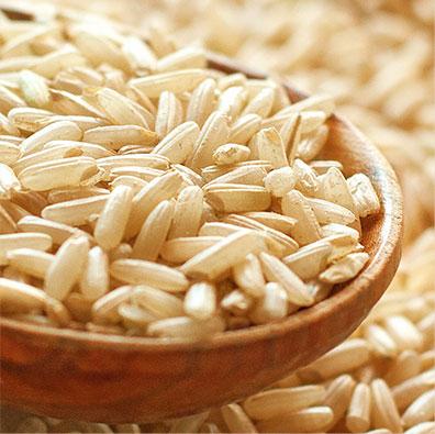 Brown Rice Pet Food Ingredient
