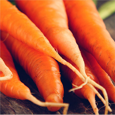 Carrots Pet Food Ingredient