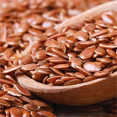 Flaxseed Pet Food Ingredient