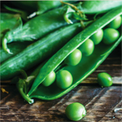 Peas Pet Food Ingredient