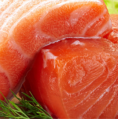 Salmon Pet Food Ingredient