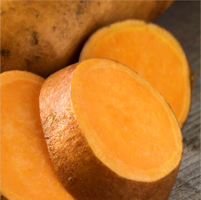 Sweet Potato Pet Food Ingredient